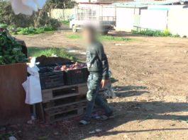 Un enfants vendeurs de légumes/Crédit: réseau NADA
